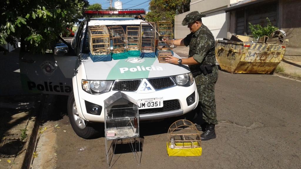 Polícia Ambiental divulga balanço total da Operação Dia do Trabalho na Área da 4ª Companhia